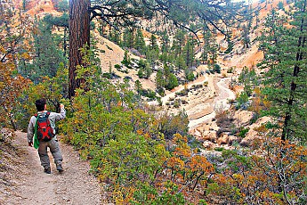 IMG_1015-Mossy-Creek-Canyon-in-Red-Canyo