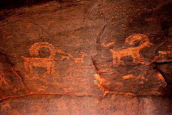 Big-Horn-Sheep-petriglyph.jpg