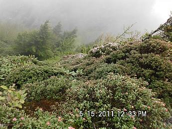 Spring-Trip-3-2011-163.jpg