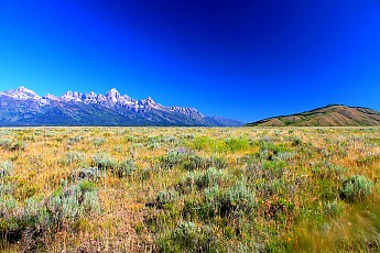 IMG_3044-The-Tetons-and-Blacktail-Butte-