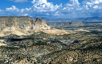white-cliffs-utah-2.jpg
