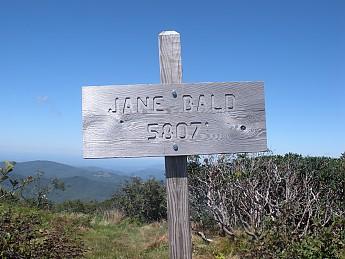 Jane-sign.jpg