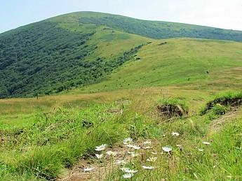 RH-Hump-Mountain-AT.jpg