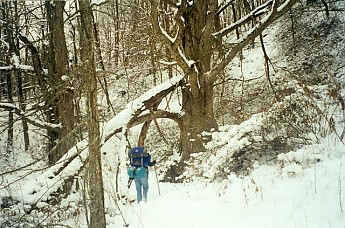 Trail-to-the-Tipi-in-the-Cold-Winter.jpg