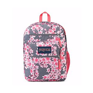 photo: JanSport Big Student Pack daypack (under 2,000 cu in)