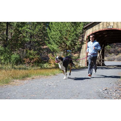 photo: Ruffwear The Roamer Leash dog leash