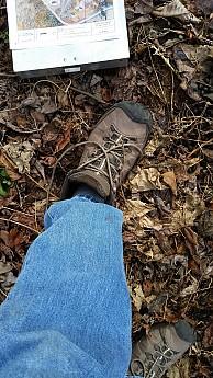 TopJeans.jpg