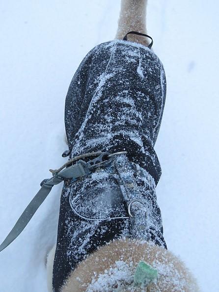 tubbs51-10jan-sterling-valley-10-dog-coat.jpg