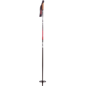 photo: Alpina BC nordic touring pole
