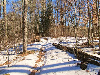 8-Hughes-Ridge-under-snow.jpg