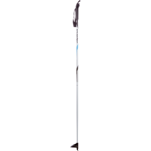 photo: Alpina ST nordic touring pole