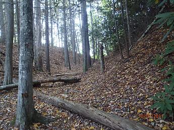 Fall-2-2011-023.jpg