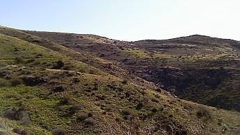 1f-grass-hills.jpg