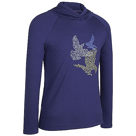 photo: Icebreaker Bodyfit 200 Long Sleeve Hood Flight long sleeve performance top