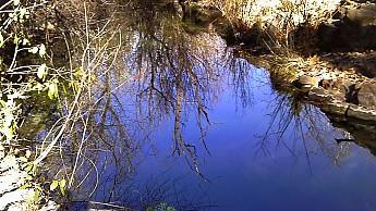 1v-Reavis-Creek.jpg