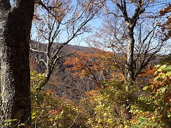 Fall-3-2011-053.jpg