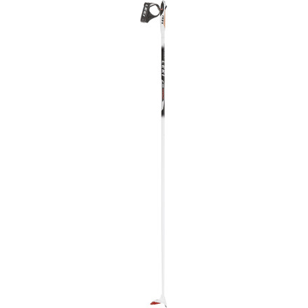 photo: Leki Crosslite nordic touring pole
