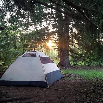 Kelty-Trail-Dome-4-under-fir-tree.jpg