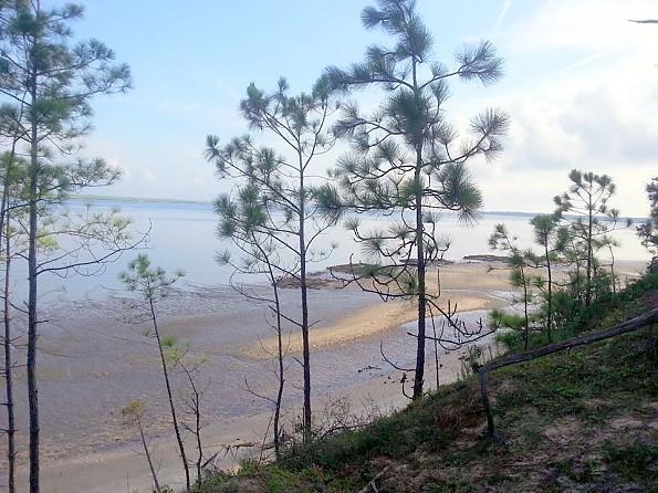 north-pine-beach-shot.jpg