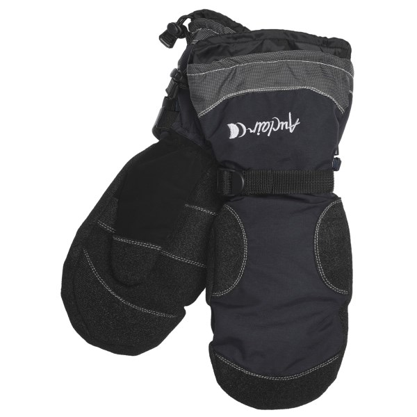 photo: Auclair Boomer Mitt insulated glove/mitten
