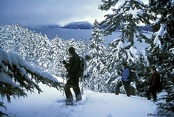 HIKERS-SNOWSHOEING_.jpg