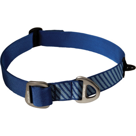 photo: Ruffwear DoubleBack Collar dog collar