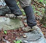 photo: Keen Women's Terradora II Waterproof Boot