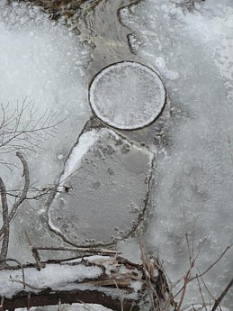 ice-circle.jpg