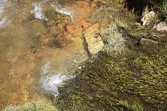 ClimSciProg11.jpg