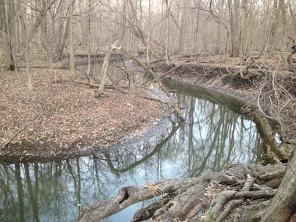 TT-Trail-Creek.jpg
