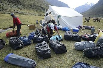 ClimSciProg15.jpg