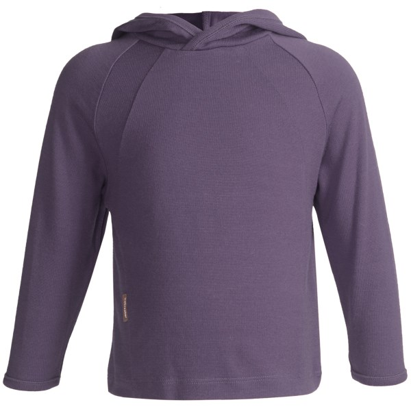 photo: Icebreaker BodyFit 260 Explorer Hoody base layer top