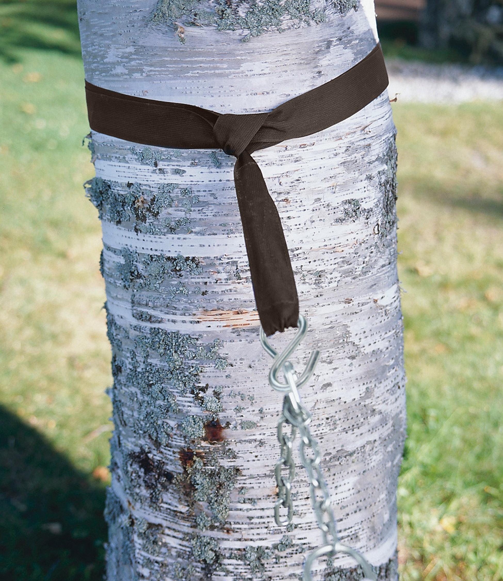L.L.Bean Hammock Tree Straps
