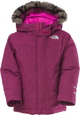 photo: The North Face Greenland Down Jacket down insulated jacket