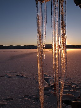 Icicles-in-sunlight.jpg