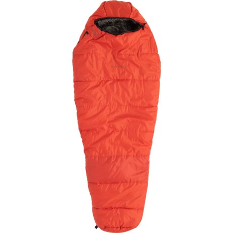 photo: ALPS Mountaineering Echo Lake 20 3-season synthetic sleeping bag