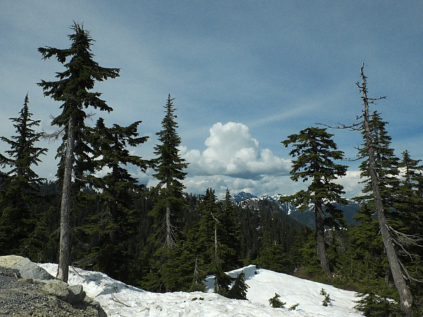 Grouse-Mountain-summit-view2.jpg