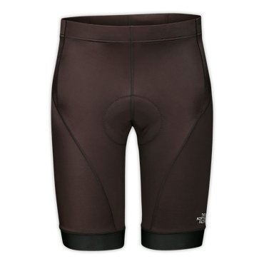 photo: The North Face 29er Short active short