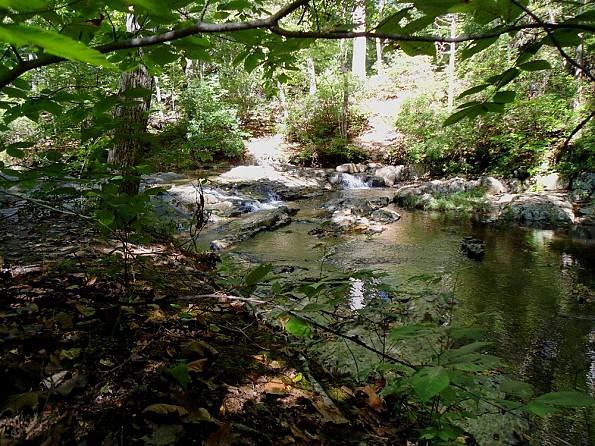 Quantico-Creek.jpg