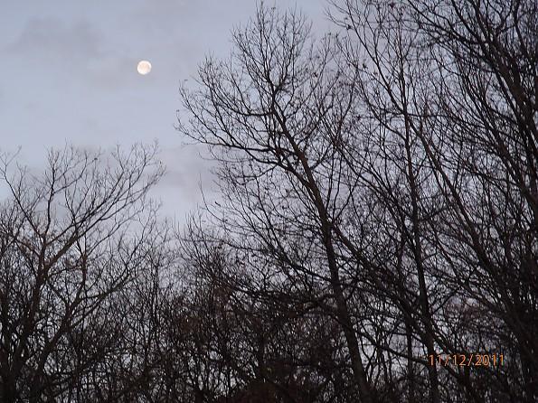 Fall-5-2011-022.jpg