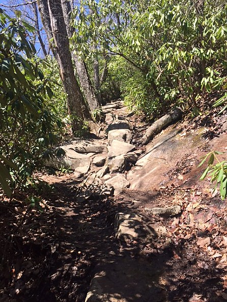 LGR-trail-1.jpg