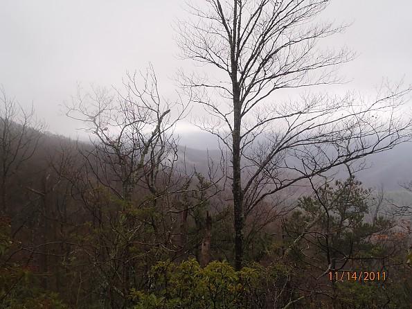Fall-5-2011-114.jpg