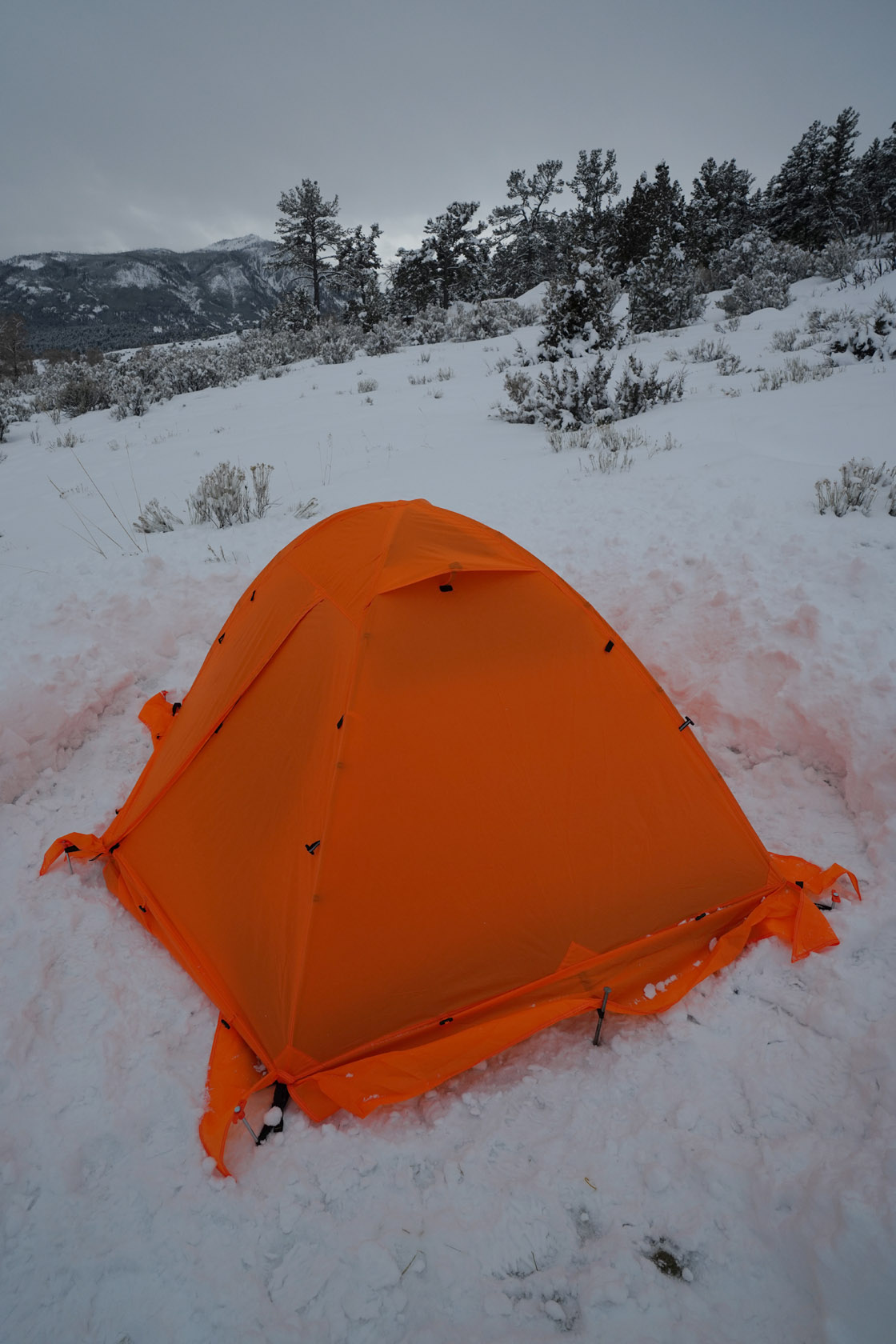 Gonex Waterproof Camping Tent 2 Person for Winter Reviews ...