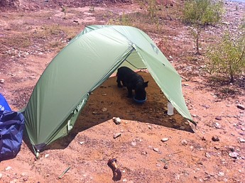 Not as light as other solo/ultralight duo tents but itu0027s worth it to me for full rain and bug protection. Overall a great solo tent that I hope lasts me ... & MSR Hubba Reviews - Trailspace