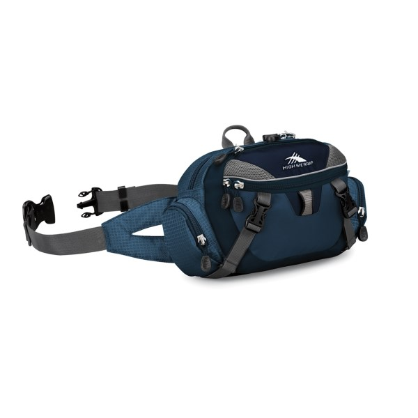 photo: High Sierra Envoy lumbar/hip pack