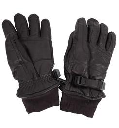 Gordini Paradigm Glove