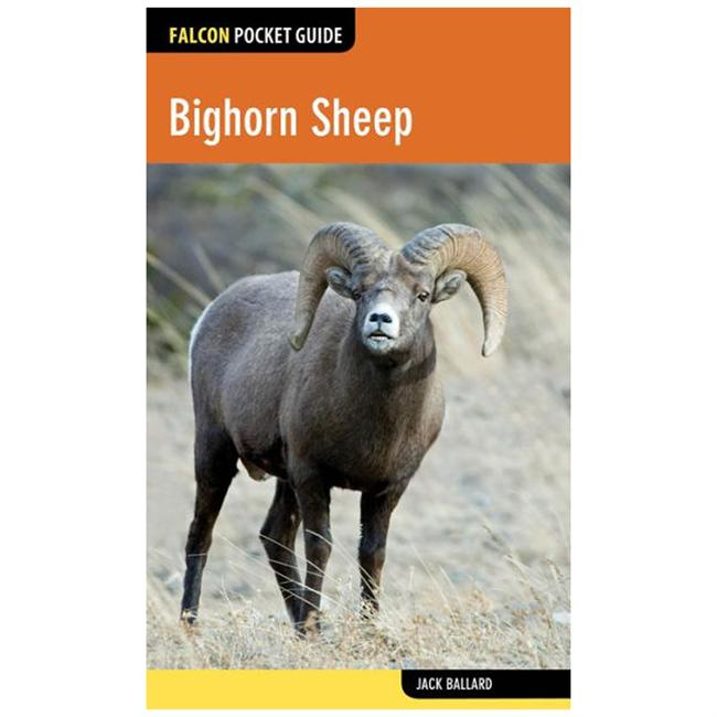 Falcon Guides Pocket Guide: Bighorn Sheep