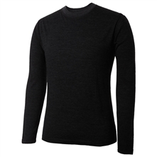 photo: Terramar Men's Thermawool Merino Crew Top base layer top