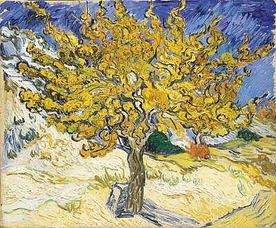 Art-08-Mulberry-Tree-Van-Gogh.jpg