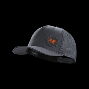 Arc'teryx Patch Trucker Hat